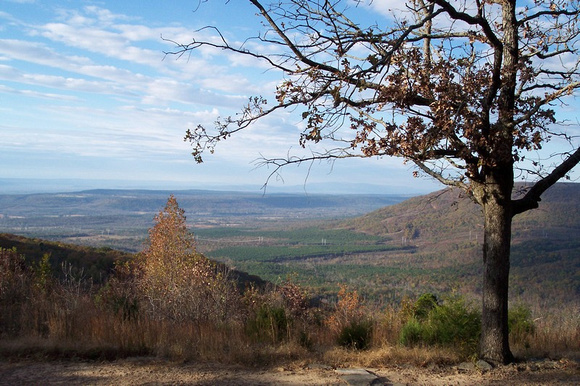 Mt. Nebo autumn view